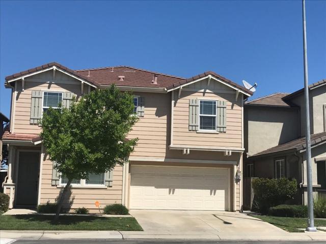 3129 Golden Poppy Lane, Stockton, CA 95209 (MLS #18024800) :: Keller Williams - Rachel Adams Group