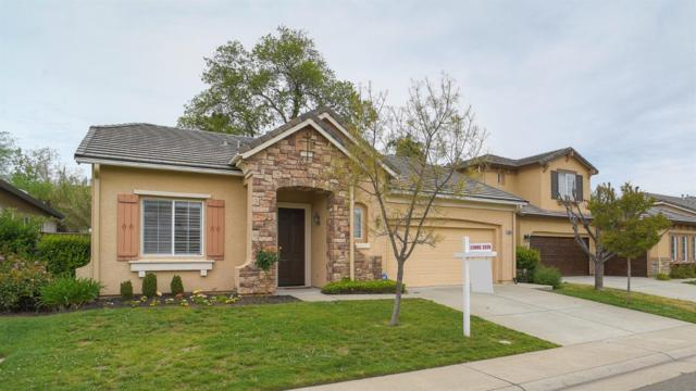 6005 Roswitha Court, Carmichael, CA 95608 (MLS #18024801) :: Gabriel Witkin Real Estate Group