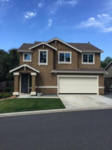 10740 Sierra Meadows, Sonora, CA 95370 (MLS #18024932) :: Heidi Phong Real Estate Team