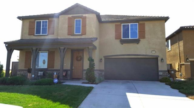 10100 Cape Verde Drive, Elk Grove, CA 95757 (MLS #18025110) :: Gabriel Witkin Real Estate Group