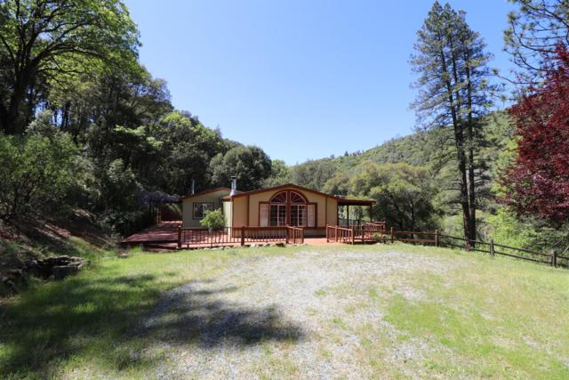 16000 Sutter Creek Road, Sutter Creek, CA 95685 (MLS #18025489) :: Keller Williams - Rachel Adams Group