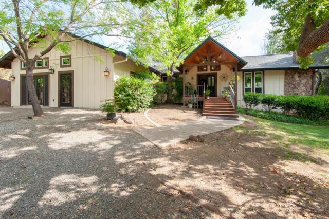 9940 Haskin Ranch Road, Newcastle, CA 95658 (MLS #18025557) :: The Merlino Home Team