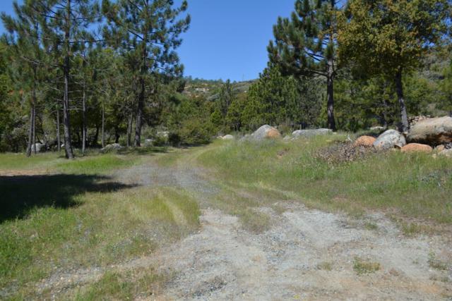 0 Lyons Bald Mountain Road, Sonora, CA 95370 (MLS #18025632) :: Heidi Phong Real Estate Team