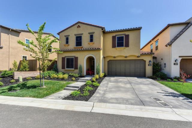 567 Chateau Drive, El Dorado Hills, CA 95762 (MLS #18025714) :: Keller Williams - Rachel Adams Group