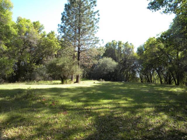 20873 Salt Creek Rd, Grass Valley, CA 95949 (MLS #18025956) :: Heidi Phong Real Estate Team