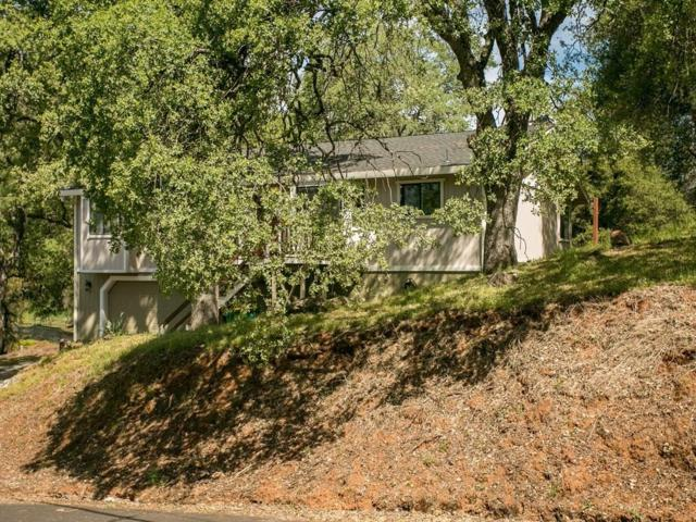 2870 Paymaster Trail, Cool, CA 95614 (MLS #18025992) :: Team Ostrode Properties