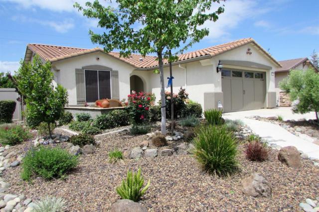 2333 Degroot Lane, Manteca, CA 95336 (MLS #18026153) :: REMAX Executive