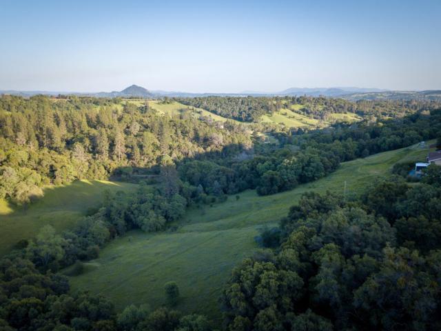 0 Running Gold Road, Sutter Creek, CA 95685 (MLS #18026758) :: Heidi Phong Real Estate Team