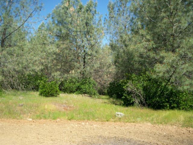 5495 Meesha Lane, Placerville, CA 95667 (MLS #18026763) :: Team Ostrode Properties