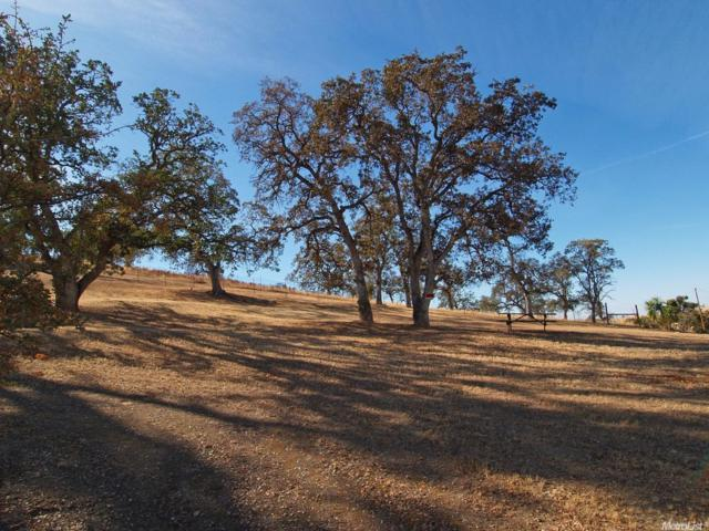 10189 Jalapa Way, La Grange Unincorp, CA 95329 (MLS #18026977) :: Team Ostrode Properties