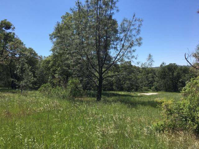 5-acres Bell Road, Auburn, CA 95603 (MLS #18027693) :: The Merlino Home Team