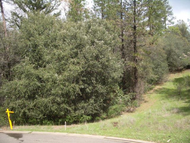 21 Liberty Mine Court, Placerville, CA 95667 (MLS #18027817) :: Dominic Brandon and Team