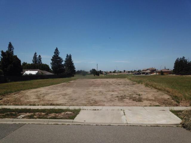 3205 Millbrook Avenue, Modesto, CA 95355 (MLS #18027855) :: Heidi Phong Real Estate Team