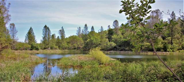 11076 Houghton Ranch Road, Penn Valley, CA 95946 (MLS #18028028) :: NewVision Realty Group