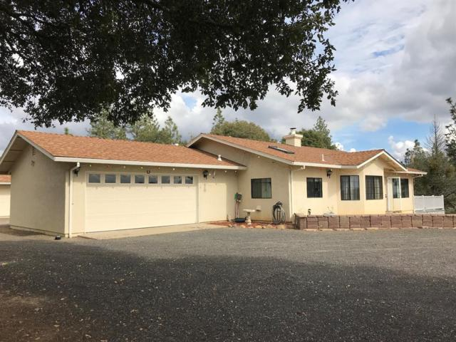 10245 Red Cloud Mine Road, Coulterville, CA 95311 (MLS #18028243) :: The Merlino Home Team