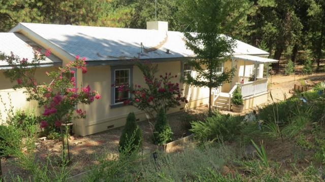 19521 Fiddletown Road, Fiddletown, CA 95629 (MLS #18028403) :: Team Ostrode Properties