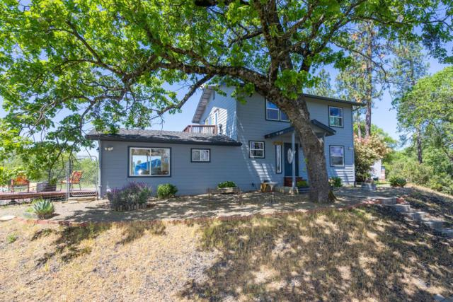 16261 Lake Canyon Road, Sutter Creek, CA 95685 (MLS #18028471) :: The Merlino Home Team