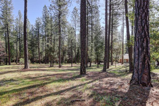10424 Woods Ravine Ct, Nevada City, CA 95959 (MLS #18028488) :: The Merlino Home Team
