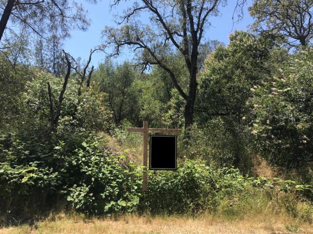 9999-A Columbia Dam Road, Lincoln, CA 95648 (MLS #18028876) :: The Merlino Home Team