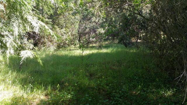 0 Old River Road, Fiddletown, CA 95629 (MLS #18028957) :: Heidi Phong Real Estate Team