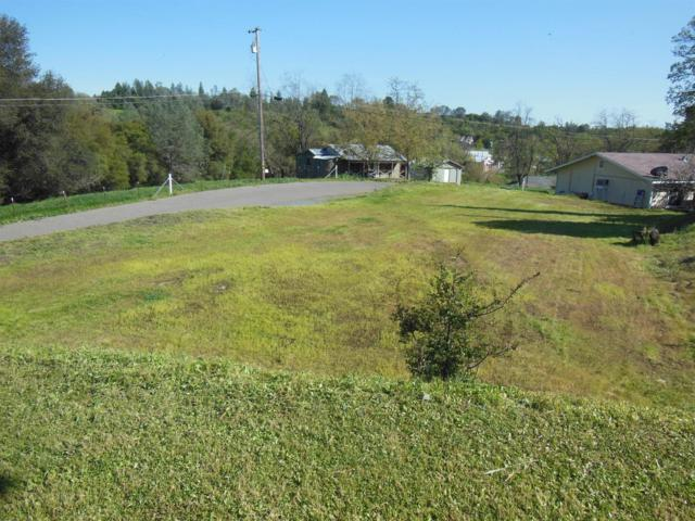 9 Raggio Road, Jackson, CA 95642 (MLS #18029308) :: Heidi Phong Real Estate Team
