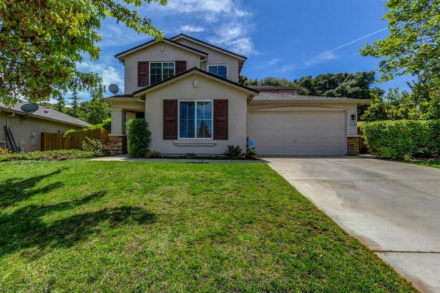 915 Ponderosa Street, Jackson, CA 95642 (MLS #18029403) :: Heidi Phong Real Estate Team