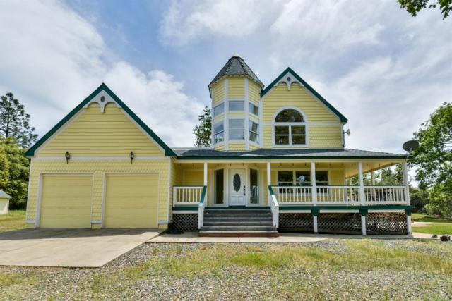 16555 Nina Lane, Fiddletown, CA 95629 (MLS #18029993) :: Team Ostrode Properties