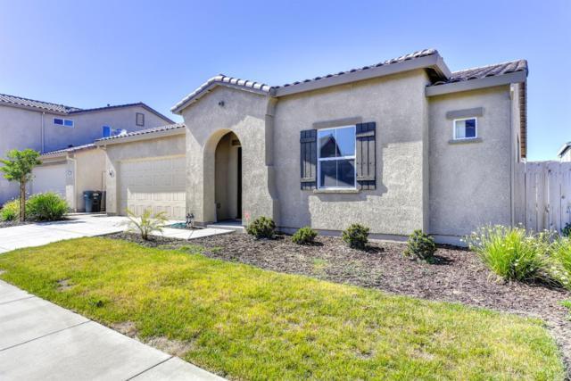 1243 Cornflower Drive, Patterson, CA 95363 (MLS #18030505) :: The Merlino Home Team