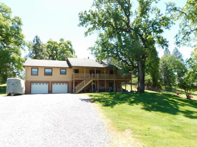 19030 Quercus Court, Fiddletown, CA 95629 (MLS #18030947) :: Team Ostrode Properties