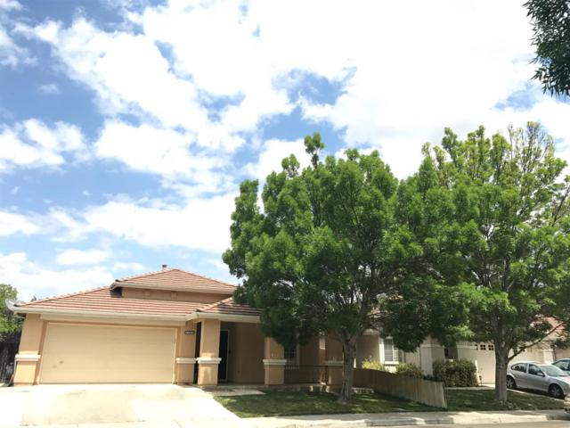 1141 Shearwater Drive, Patterson, CA 95363 (MLS #18031318) :: The Merlino Home Team