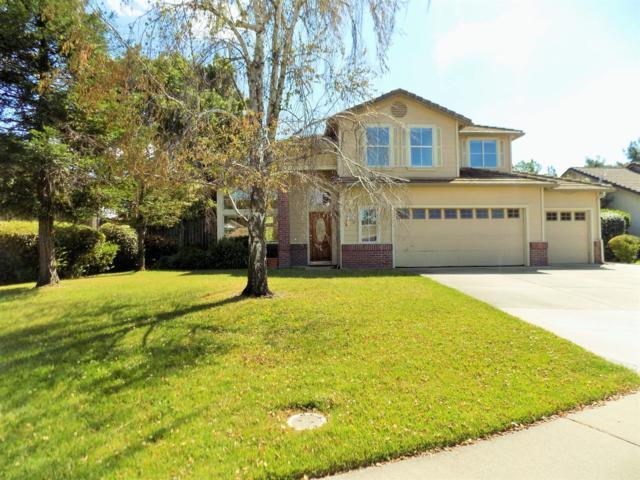 203 Esher Court, Roseville, CA 95747 (MLS #18031427) :: Heidi Phong Real Estate Team