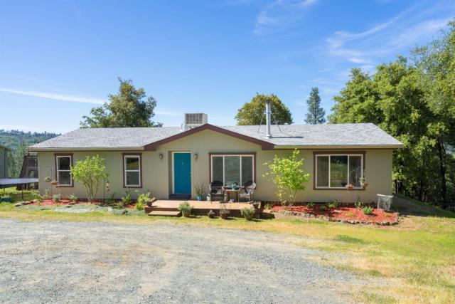 15670 Meadowlark Lane, Sutter Creek, CA 95685 (MLS #18031441) :: Heidi Phong Real Estate Team