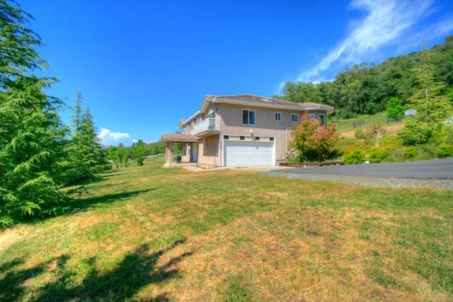 13399 Bell Brook Drive, Auburn, CA 95602 (MLS #18031732) :: The Merlino Home Team