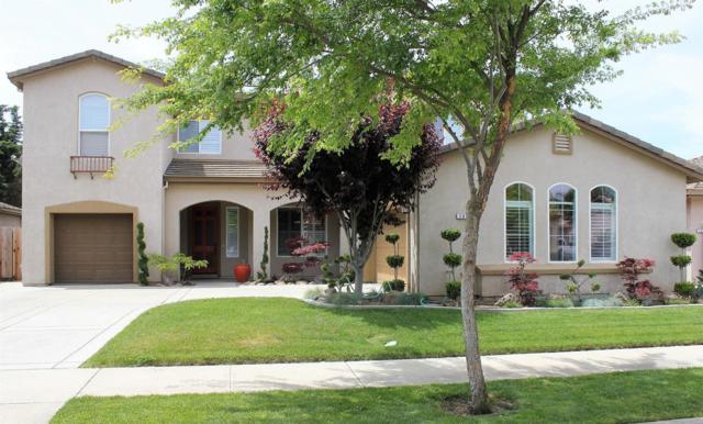 736 Jonabel Way, Oakdale, CA 95361 (MLS #18031750) :: Heidi Phong Real Estate Team