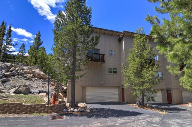 3025 Christmas Valley Rd. #10, South Lake Tahoe, CA 96150 (MLS #18031837) :: The Merlino Home Team