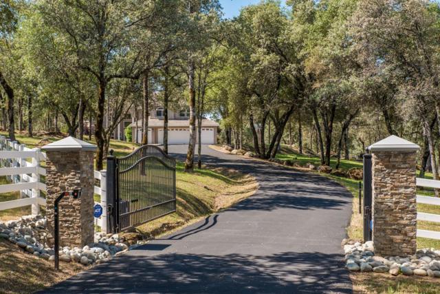 7667 Sisson Lane, Auburn, CA 95602 (MLS #18031947) :: The Merlino Home Team