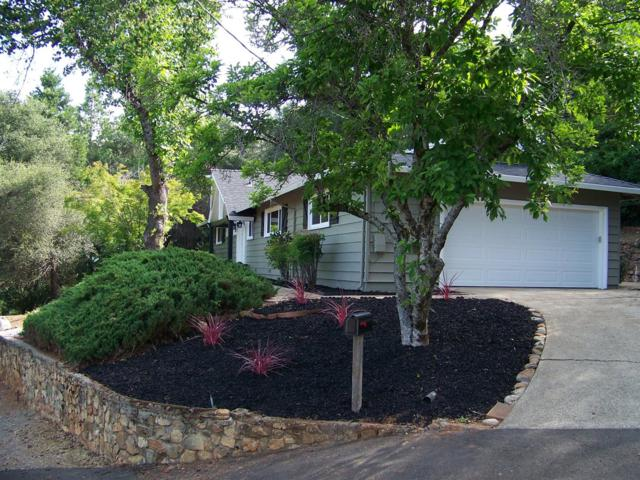 171 Panning Way, Placerville, CA 95667 (MLS #18032010) :: The Merlino Home Team