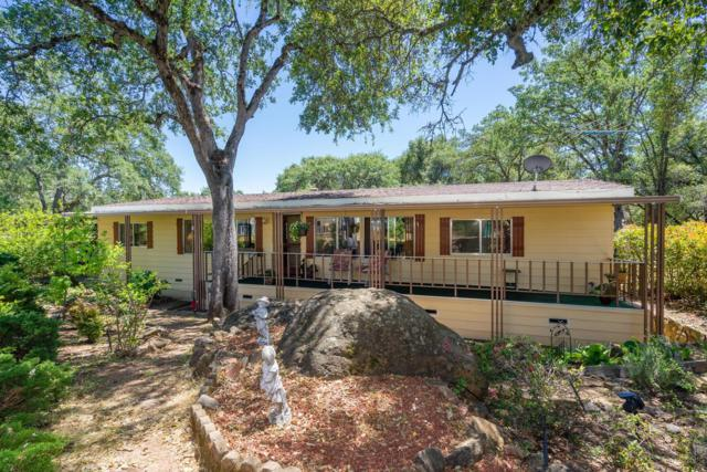4700 Old French Town Road #74, Shingle Springs, CA 95682 (MLS #18032109) :: NewVision Realty Group