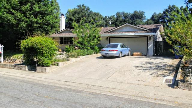 8053 Dorian Way, Fair Oaks, CA 95628 (MLS #18032441) :: The Merlino Home Team