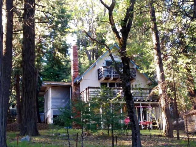 3255 Sly Park Road, Pollock Pines, CA 95726 (MLS #18032466) :: The Merlino Home Team