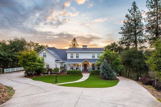 2055 Hotchkiss Court, Cool, CA 95614 (MLS #18032613) :: The Merlino Home Team