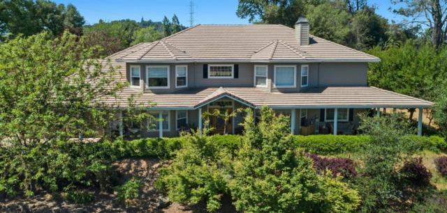 3066 Roughrider Court, Placerville, CA 95667 (MLS #18032743) :: Team Ostrode Properties