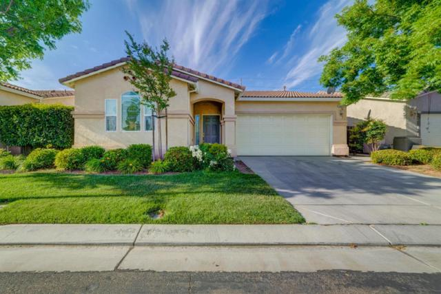 3009 La Vina Circle, Los Banos, CA 93635 (MLS #18032914) :: Heidi Phong Real Estate Team