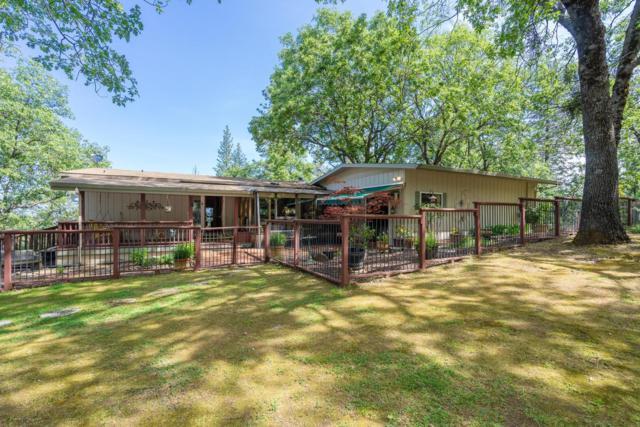 14802 Tanyard Hill Road, Pine Grove, CA 95665 (MLS #18032919) :: Dominic Brandon and Team