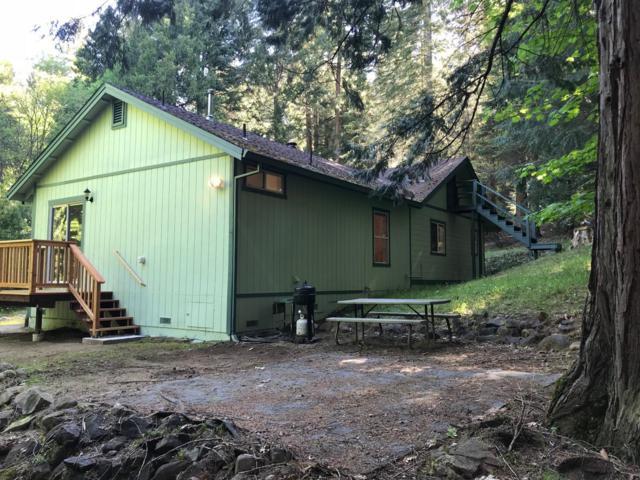 4900 Sierra Springs Dr, Pollock Pines, CA 95726 (MLS #18033039) :: Heidi Phong Real Estate Team