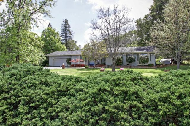 13936 Torrey Pines Dr., Auburn, CA 95602 (MLS #18033069) :: NewVision Realty Group