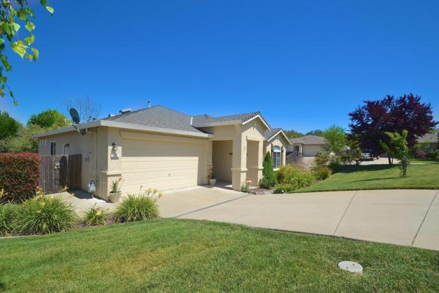702 Kristi Court, Jackson, CA 95642 (MLS #18033164) :: Heidi Phong Real Estate Team