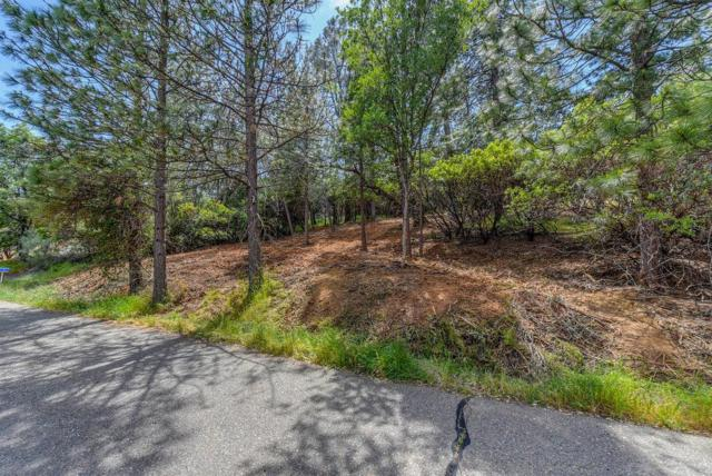 11581 Gold Strike Road, Pine Grove, CA 95665 (MLS #18033217) :: NewVision Realty Group