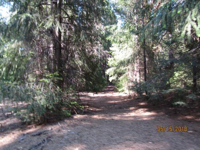 18748 Lancelot Lane, Pioneer, CA 95666 (MLS #18033359) :: Heidi Phong Real Estate Team