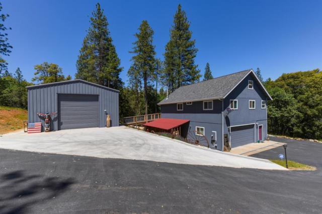 19121 Mineral Ridge Court, Pine Grove, CA 95665 (MLS #18033401) :: Heidi Phong Real Estate Team